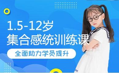 重庆1.5-12岁感统训练辅导