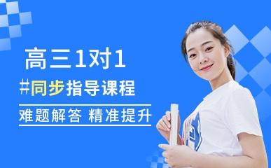 广州高三一对一同步辅导培训班