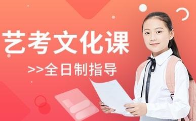 重庆全日制艺考文化辅导课