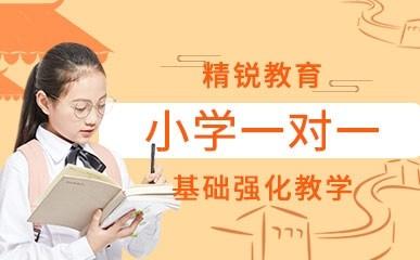 深圳小学一对一培训