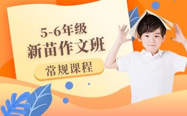 天津5-6年级新苗大作文课程