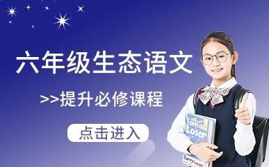武汉六年级语文提升班