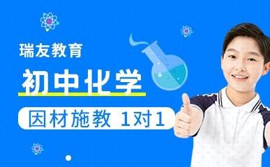天津初中化学一对一冲刺班