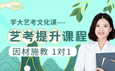南昌艺考文化1对1冲刺班