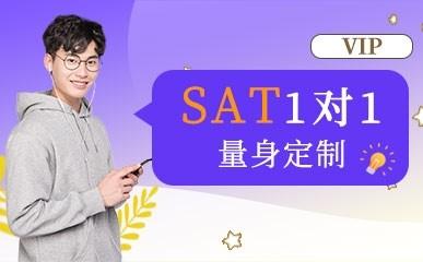 天津SAT一对一课程