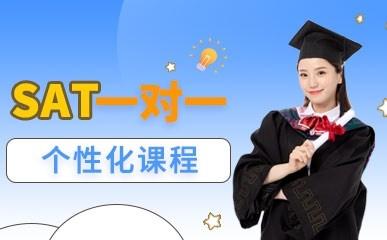 天津SAT一对一单项班