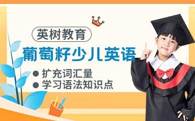 天津葡萄籽绘本课程
