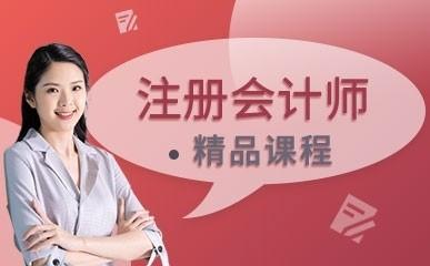 深圳CPA培训班