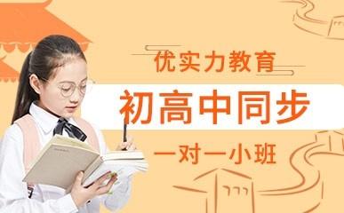 郑州初高中一对一同步辅导班
