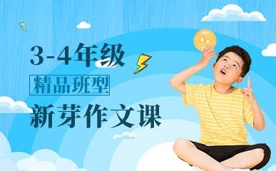 天津3-4年级新芽大作文辅导