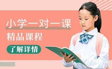济南小学一对一同步课程