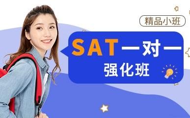 天津SAT一对一强化班