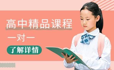天津高中一对一辅导班
