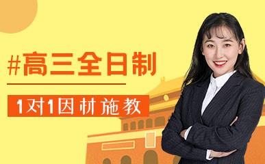 天津高三全日制VIP定制班
