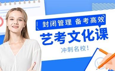 东莞高三艺考文化课冲刺班