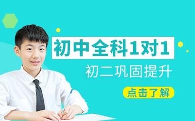 广州初中数学一对一辅导课程