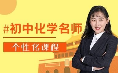 天津初中化学提升辅导课