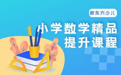 武汉小学数学一对一辅导