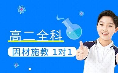 深圳高二一对一全科辅导班