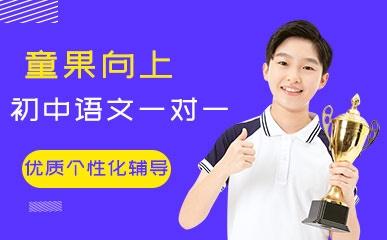 初中语文一对一VIP专项课程