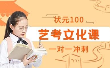 天津艺考一对一文化冲刺班