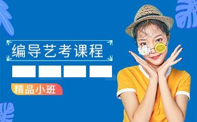 南京编导艺考辅导小班