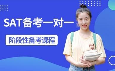 深圳SAT一对一培训
