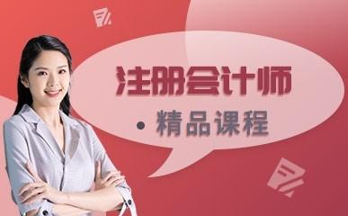 天津注册会计师双师课堂