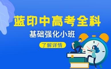 天津蓝印中高考全科辅导