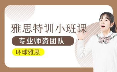深圳雅思小班培训