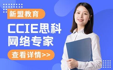 天津CCIE思科网络专家认证课
