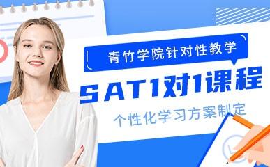 天津SAT一对一辅导班