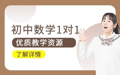 深圳初中数学一对一培训班