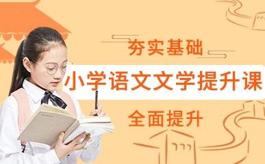 小学语文文学提升课程