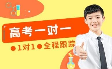 天津高考一对一定制提升辅导