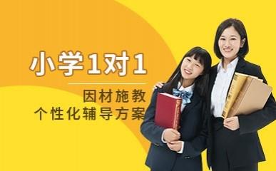 广州小学一对一同步辅导课程