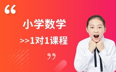 杭州小学数学1对1辅导