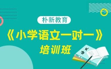 天津小学语文一对一提升班
