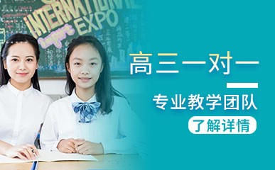 深圳高三一对一辅导班