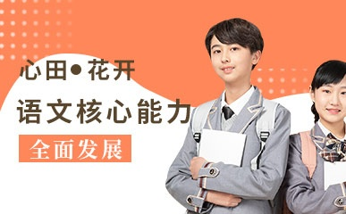 深圳小学语文线上辅导