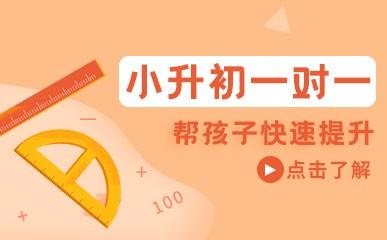 杭州小升初1对1课程