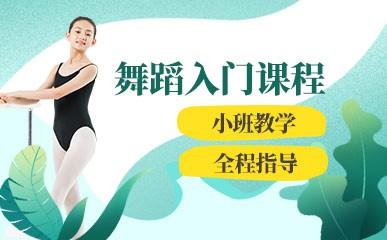 天津舞蹈入门培训班