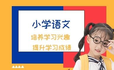 东莞小学语文培训