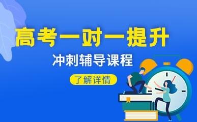天津高考一对一冲刺班