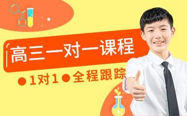 郑州高三一对一全科辅导班