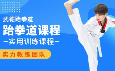 天津跆拳道培训小班