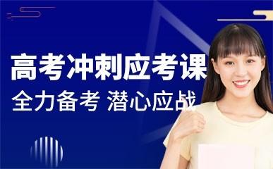 上海高考面授课程