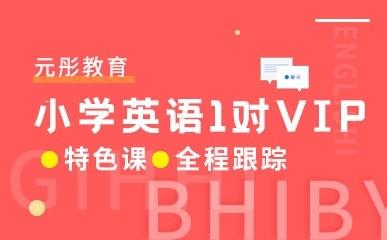 天津小学英语一对一VIP课程