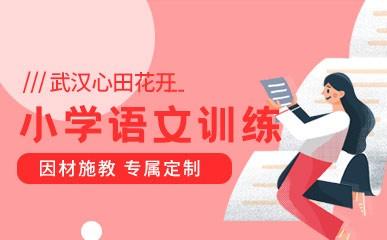 武汉小学语文培优课程
