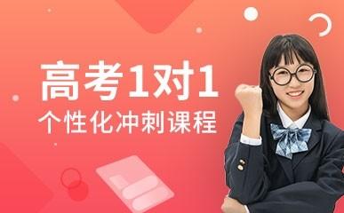上海高考一对一强化辅导